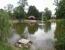 Tófólia - felszíni vízszigetelés