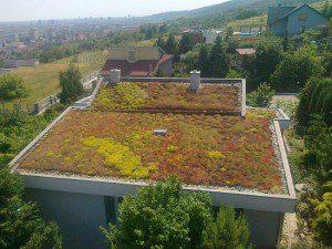izolace zelené střechy