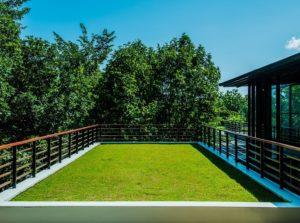 zelená, vegetační střecha